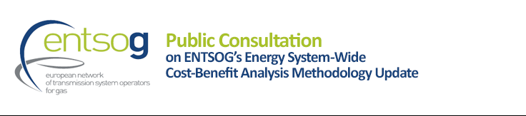 Public Consultation on ENTSOG's Energy System-Wide