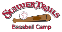 Baseball Survey Logo