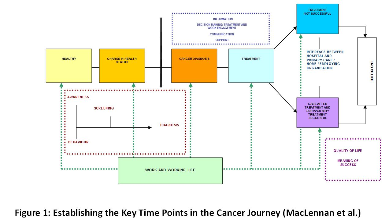 Figure 1: Establishing the Key Time Points in the Cancer Journey (MacLennan et al.)