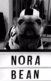 "5. ""Nora Bean"" by Amanda Huston (law student)"