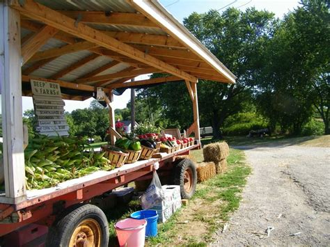 Roadside Farm Stand