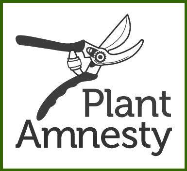 PlantAmnesty