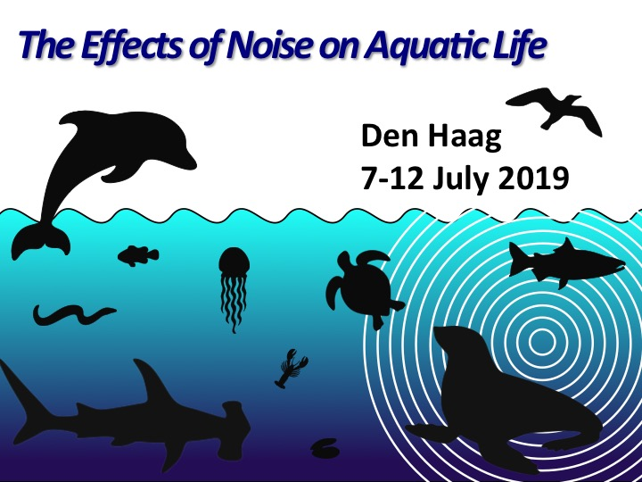 aquatic noise 2019 den haag request for financial support