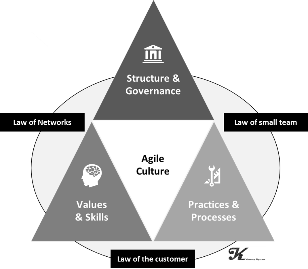 Framework of Agile Culture (Krapf, 2017)