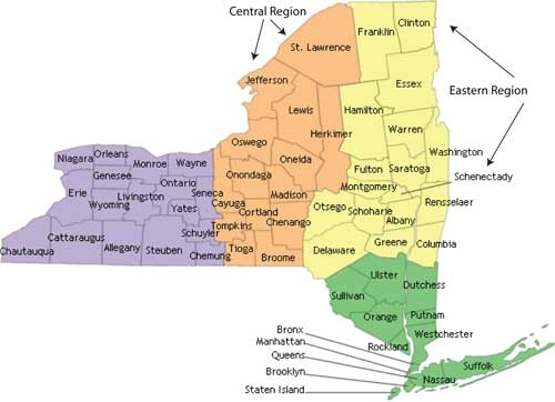 Mouse PLP NY eligible counties (counties in green, orange or yellow)