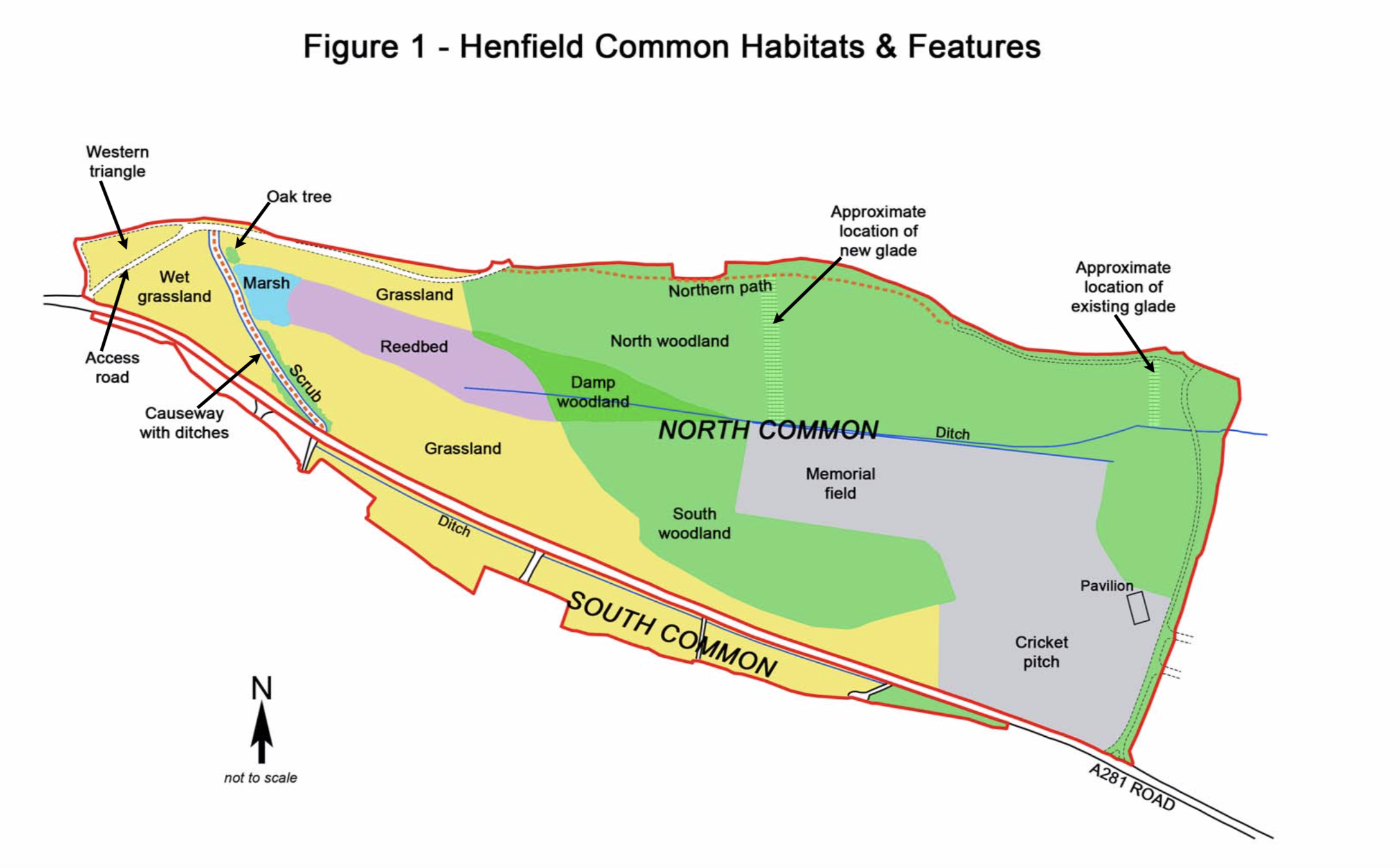 Henfield Common Habitats and Features