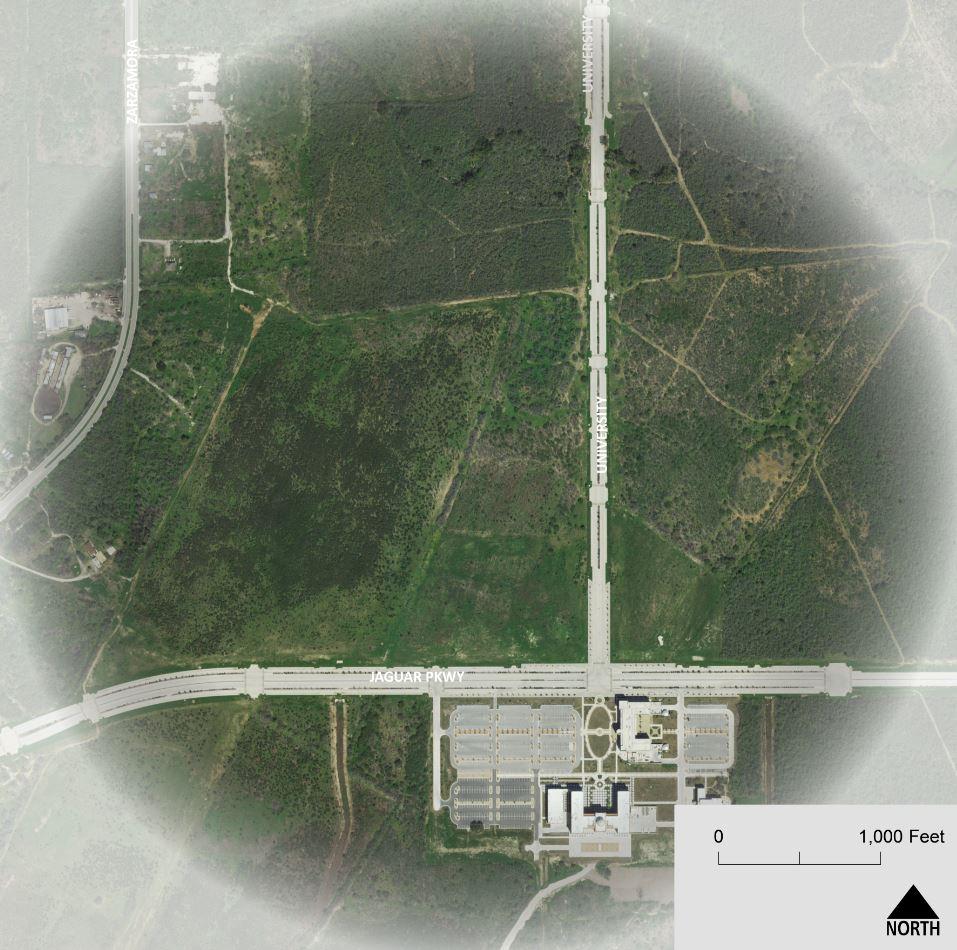 Focus Area #2 - Jaguar Parkway & University Way