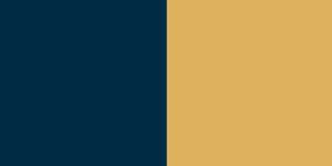 D. Dark blue and Light Orange