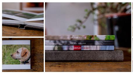 Album/ Small Gift Prints ($500+)