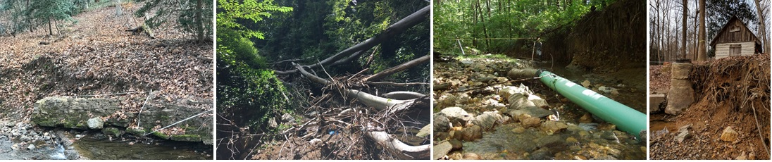 Left to right: Steep banks, trees falling in stream, exposed pipe. Last photo: steep banks, exposed tree rootsand infrastructure.
