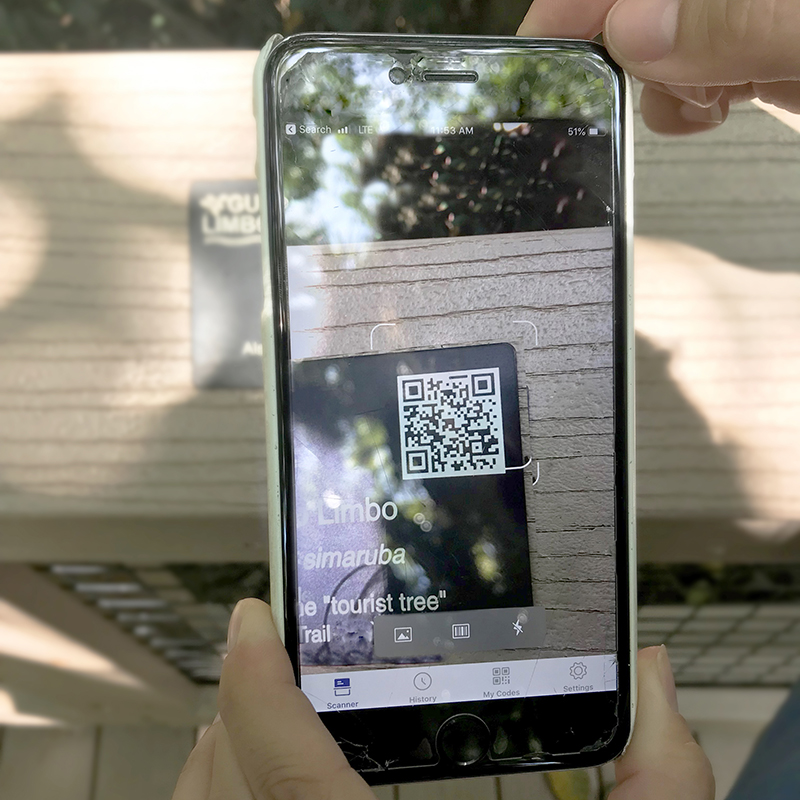 As you walk along the elevated boardwalk, you will find interactive tree tags. Scan the QR codes tolearn more about each plant andsolve the questions.