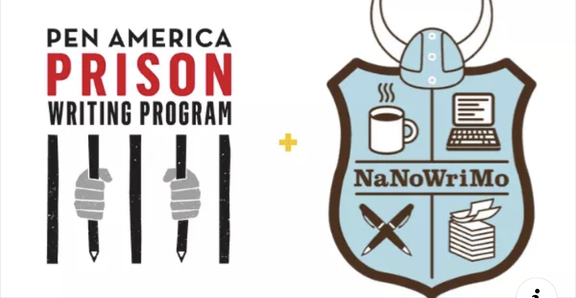 November 6, 2019 NaNoWriMo Announced a Prison Writer Program Which Currently Children Can Access Including Being Asked Their Name and any Message Be Sent to a Prisoner.