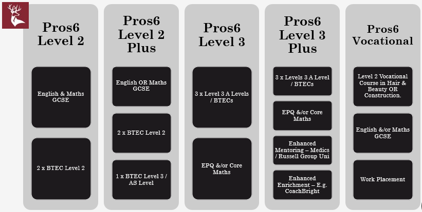 Pros6 currently offer the following 5 pathways:<br><br>