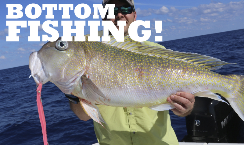 <strong>BOTTOM FISHING VIDEOS</strong>