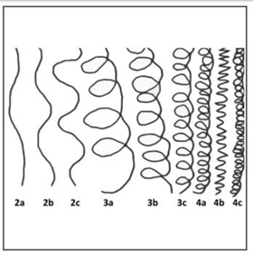 Please select your curl type using the chart below