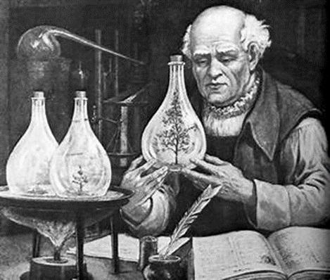Alchemist Tree in Vase