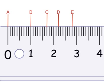<strong>Use the image below to identify the marks on this Metric Ruler for questions 12 and 13</strong>
