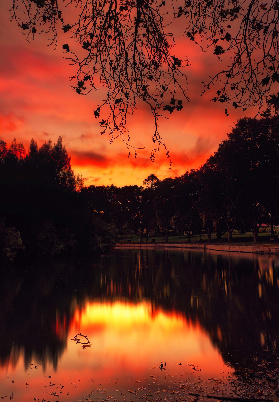 59. Hyde Park sunset, 2020