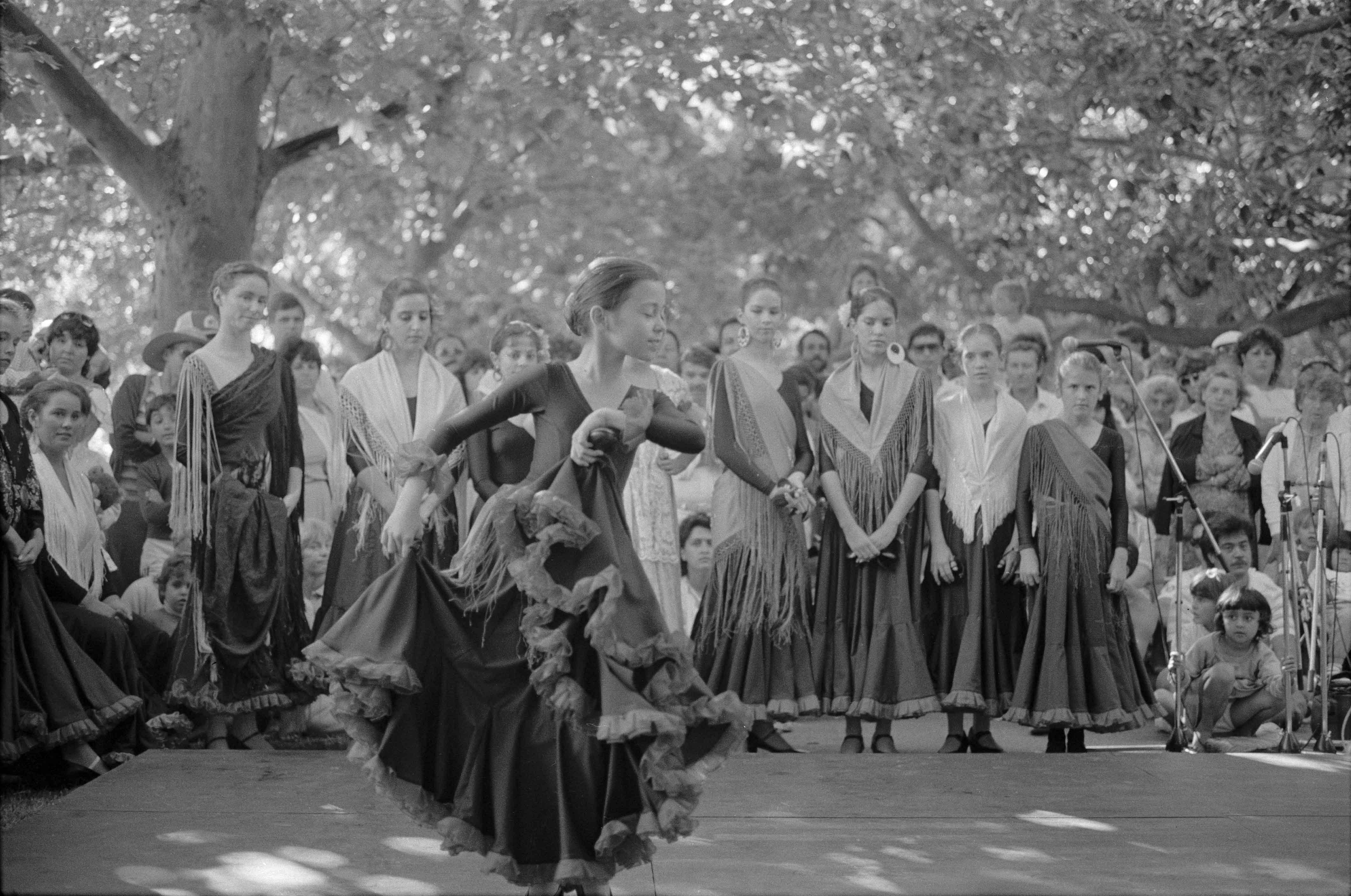128. Festival Hyde Park, 1985