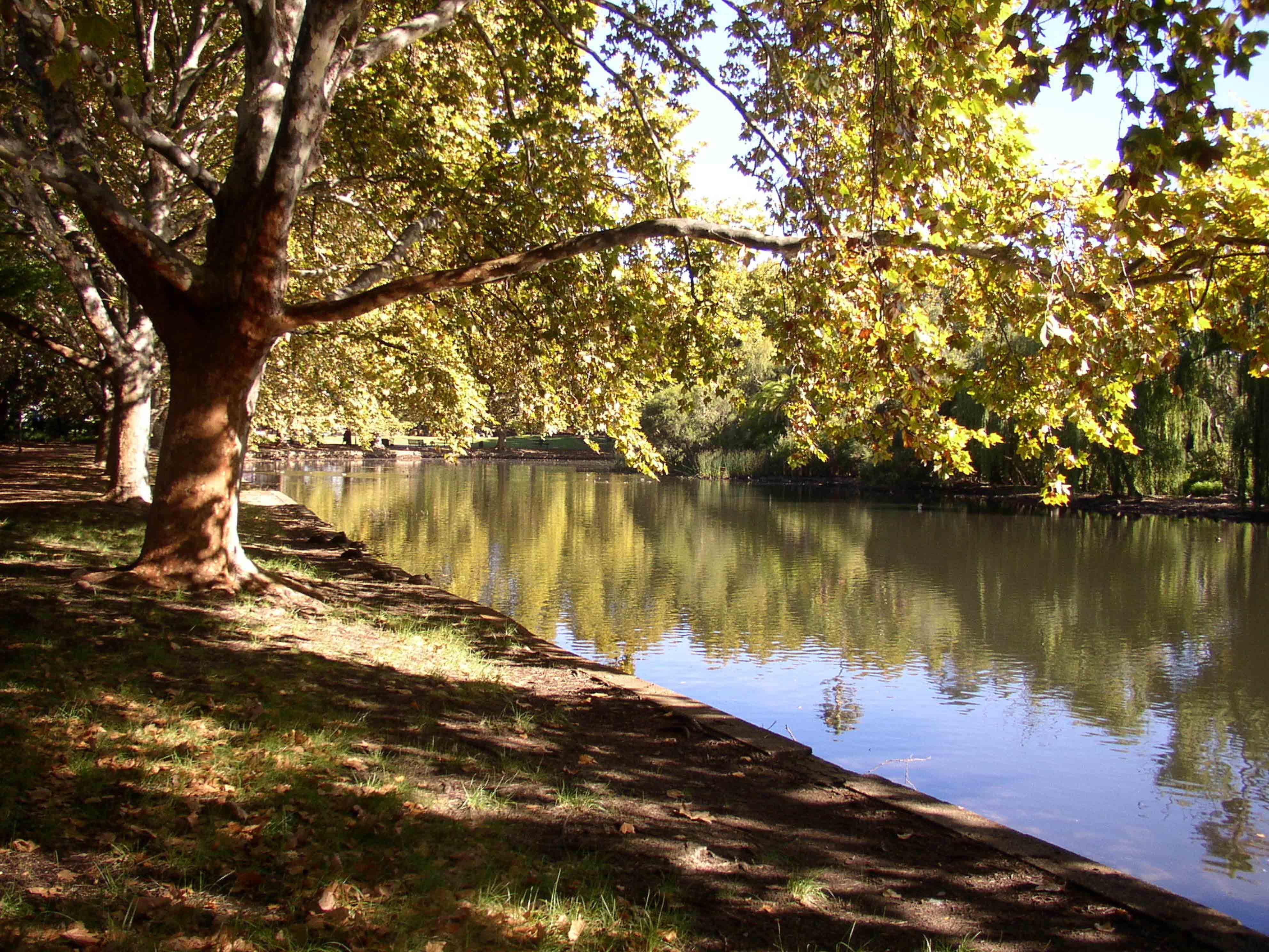 110. Hyde Park Perth, 2002