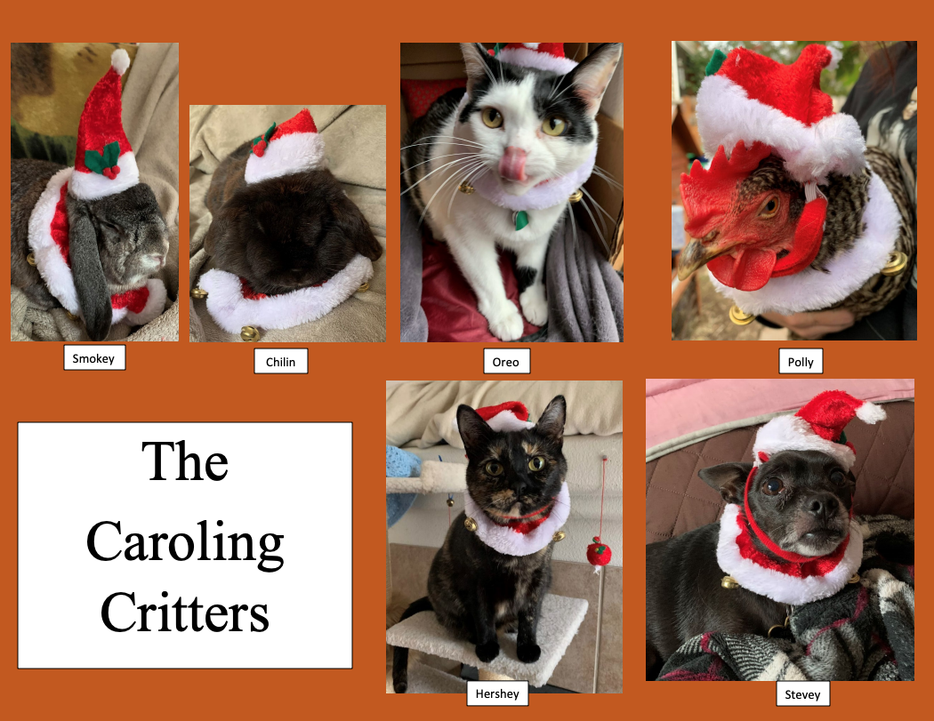 """3.""""The Caroling Critters"""" by Carolin Thompson (Student Support Services)"""