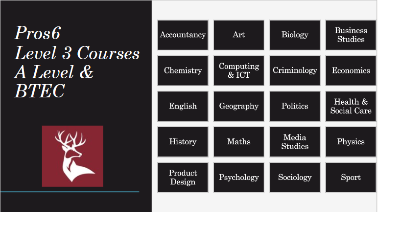 <strong>Level 3 or Level 3 Plus</strong> <strong>pathways</strong> - these are the Level 3 A Level &amp; BTEC courses you are able to study. <br><strong>Please only complete if you have the entry requirements for L3 learning - 5's in English &amp; Maths along with three other high passes at GCSE.</strong><br><em>Some have not been included in the option blocks because your expressions of interest forms did not show a large enough</em> interest.<br><br><br>