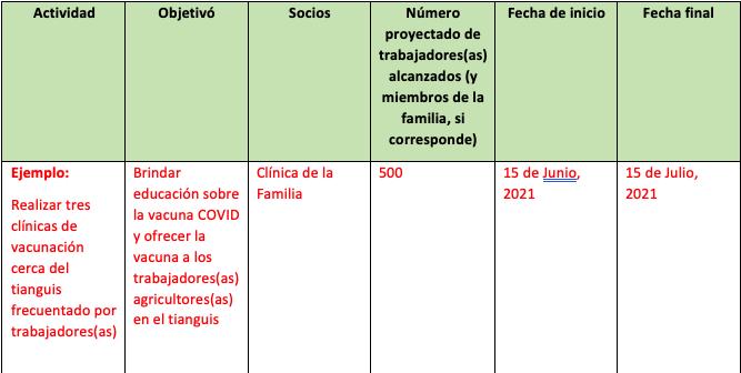 Utilice el modelo de plan de trabajo para completar la información requerida.
