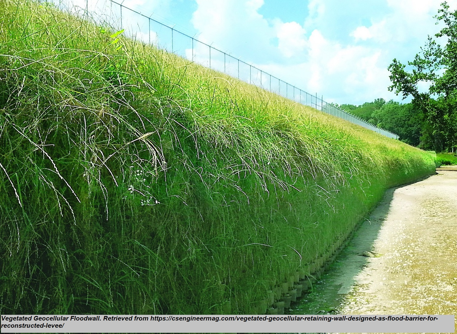 """Vegetated Geocellular Floodwall<br><span style=""""font-family: arial, helvetica, sans-serif; font-size: 12pt; color: #4a4a4a;"""">This permanent flood wall is designed as a gravity structure without reinforcement that is applied to a change in grade application. The Geocellular wall is an alternative to a levee or rip rap that will produce similar level of flood protection.</span>"""