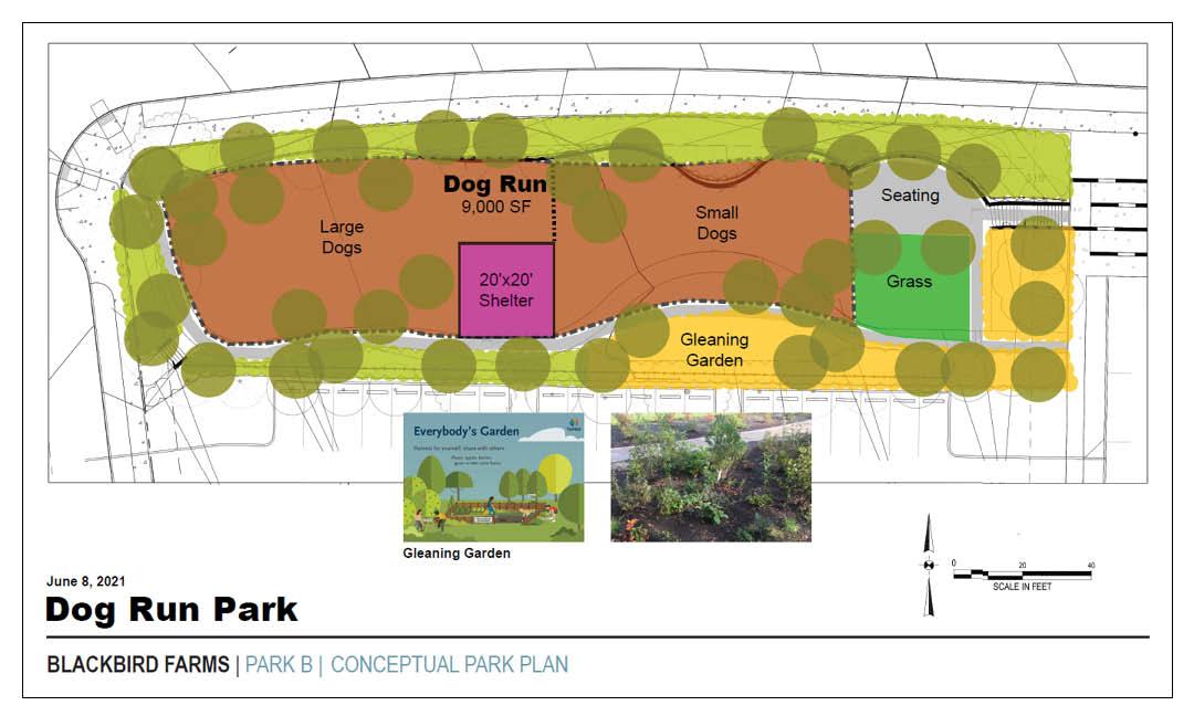 <strong>Dog Run Park Option</strong>