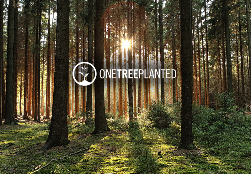 """<span style=""""color: #ff0000;"""">Congratulations! With your help we just planted a tree!</span><br><span style=""""color: #ff0000;"""">Thank you for yourvaluable input and taking the time for this survey, we highly appriciate it!</span><br><span style=""""color: #ff0000;"""">If you want to pass on the survey to colleagues, family or friends, we would be very pleased. </span><br><span style=""""color: #ff0000;"""">Every opinion is valuable to usto make a positive change!</span>"""