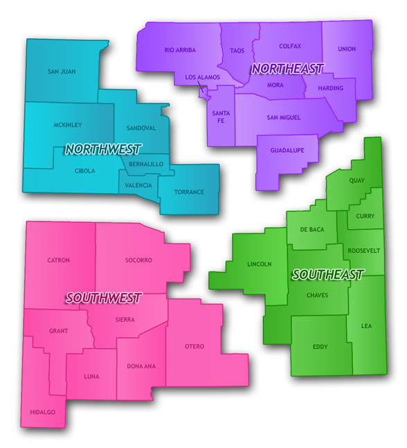 These are the regions of New Mexico as defined by the department of health. Please use this image to answer the following question.