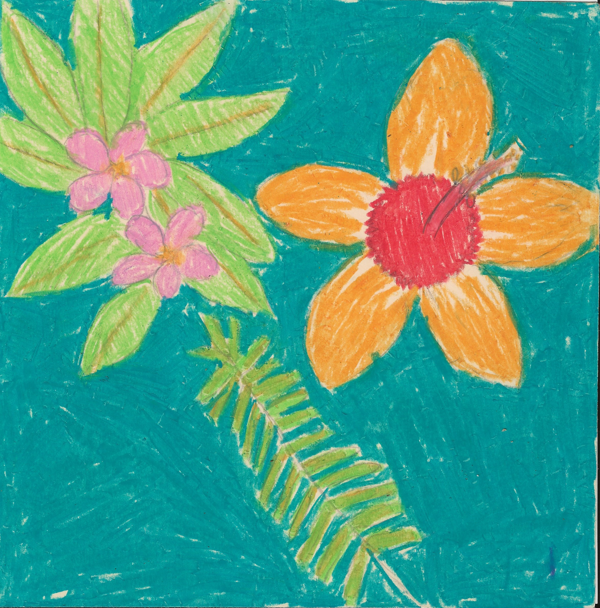 "<br><br>""Hawaiian Flowers"" by Autumn E, - 2-D Visual Arts (Intermediate - Grades 3-5)"