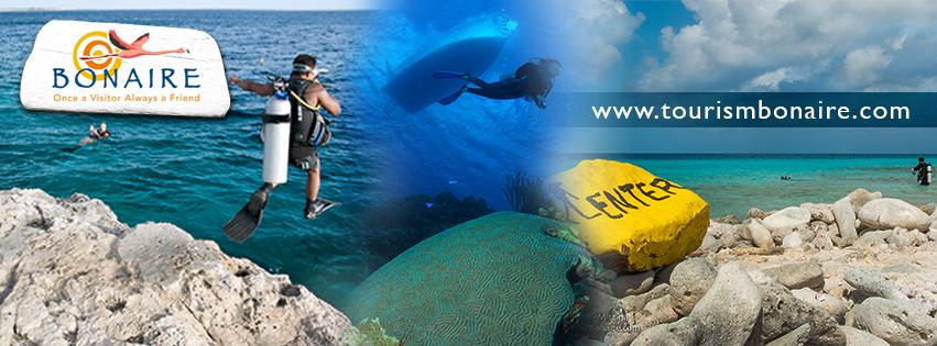 Bonaire Diver Survey
