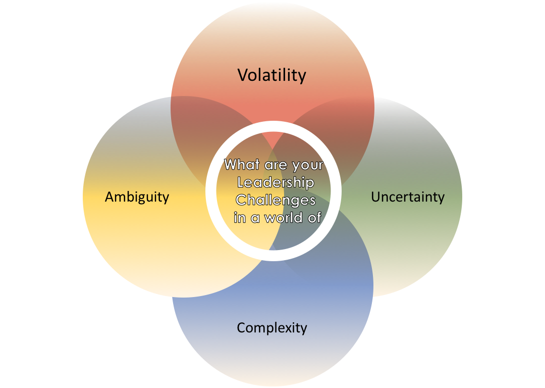 This survey looks at leadership, as a journey in a VUCA (volatility, uncertainty, complexity, ambiguity) world, with four different leadership quests unfolding at the same time. The four questions of this survey relate to these quests.<br><br>