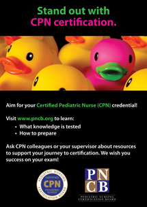 "<strong>Certified Pediatric Nurse (CPN) Poster</strong> <br><br> 12"" x 18"" CPN poster"
